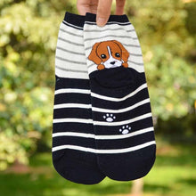 Load image into Gallery viewer, Adorable Dog Socks