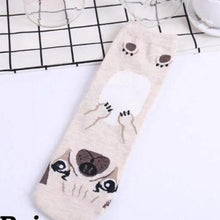 Load image into Gallery viewer, Cute Dog Printed Socks