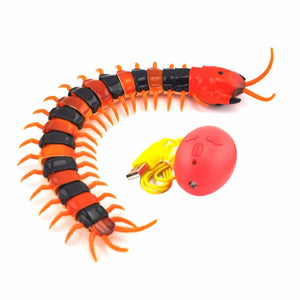 Insect Remote Control Cat Toy