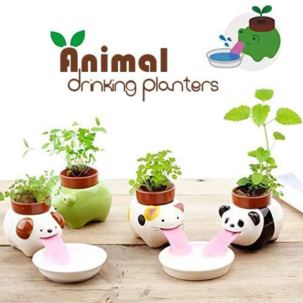 Animal Drinking Planter