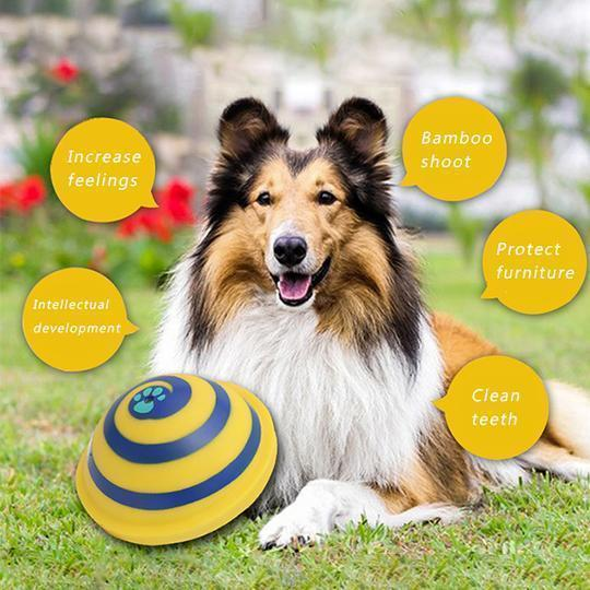 Indoor Gliding Squeaky Pet Dog Toy
