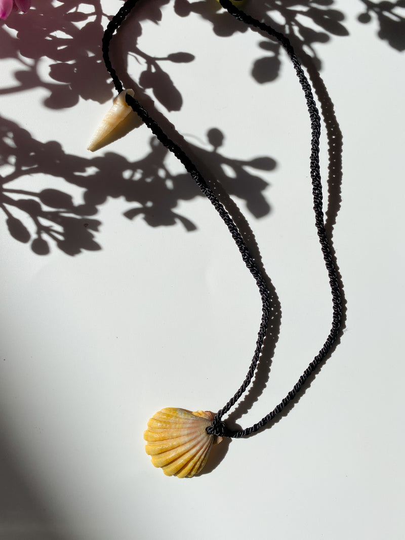 Kūkahi - Sunrise Shell Necklace