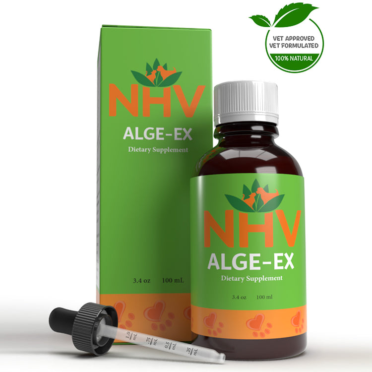 NHV ALGE-EX for Dogs, Cats, Rabbits and Birds - Dietary Supplement - 100ML