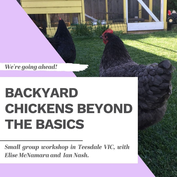 Sunday 13 December 2020: TEESDALE Backyard Chickens Workshop + Open Garden