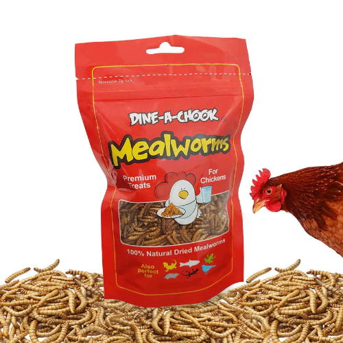 Mealworms 283g bag