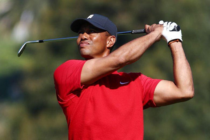 Tiger's Coming Back