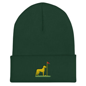 Big Dog Beanie Proud 90 Spruce
