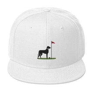 The Big Dog - White Snapback Proud 90
