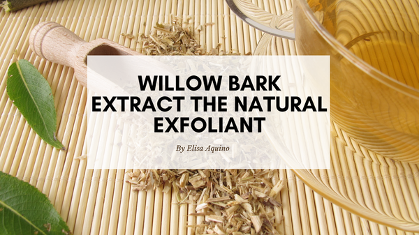 Ingredient Spotlight: Willow Bark Extract, the Natural Exfoliant