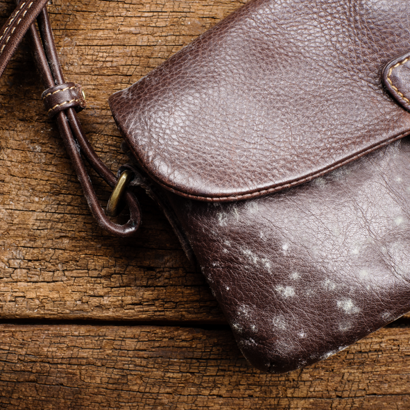 How to clean moldy leather with this definitive and simple trick
