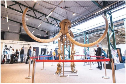 This year's show featured a 40,000-year-old mammoth skeleton, which also acted as the exhibition's symbol.