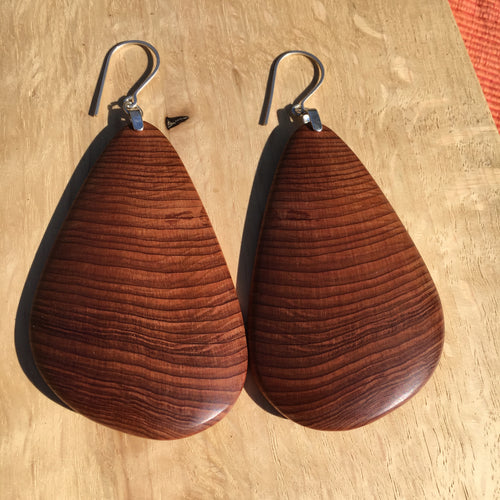 Old-growth Cedar curved wing earrings