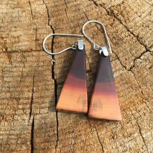 Butte Fire Manzanita - slant earrings