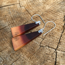 Load image into Gallery viewer, Butte Fire Manzanita - slant earrings