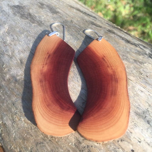Butte Fire Manzanita - High-water-line earrings