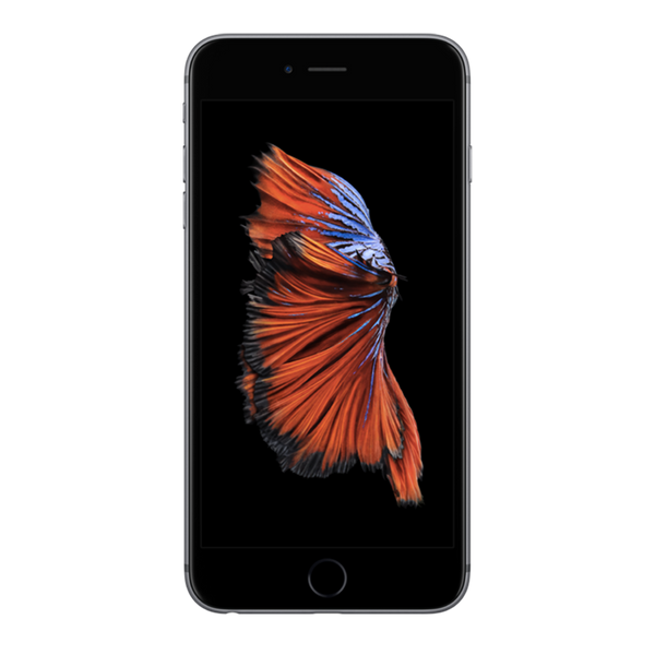 Iphone 6S + Reconditionné