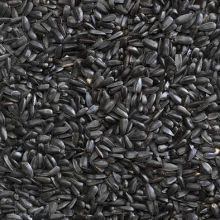 Black Sunflower Seeds - 1kg, 5kg, 10kg, 25kg Sack.