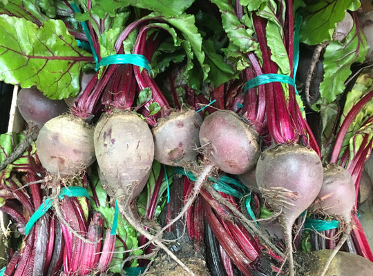 Beetroot - x Bunch,raw