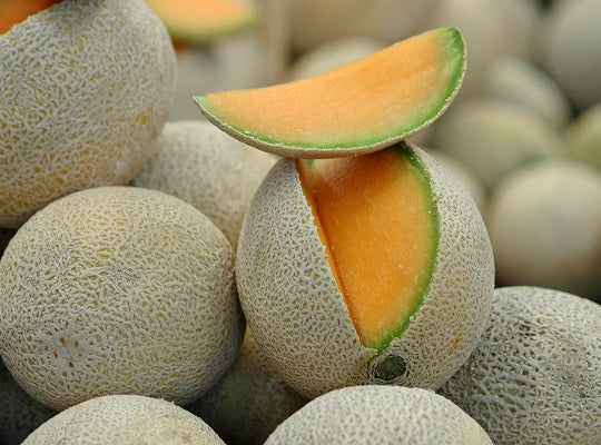 Melon Cantaloupe – each