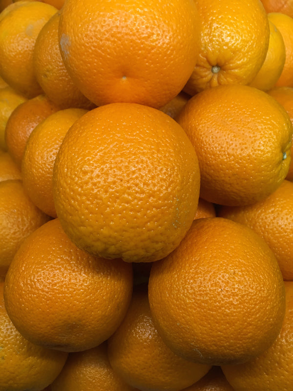 Oranges - Large