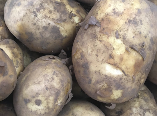 Potato - English, Maris Piper x 1kg, 12.5kg sack, 25kg sack.