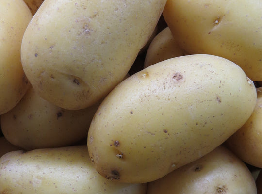 Potatoes - Washed Whites   - x 2.5kg,  x 5kg