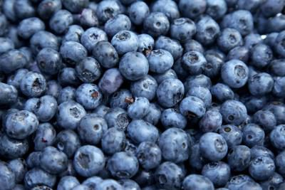 Blueberries  - x 125gm pnt