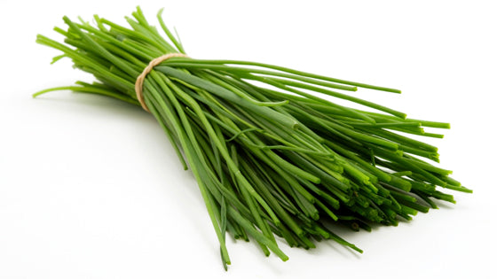 Chives - pkt