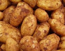 Potato - Cyprus New Season - x 1kg