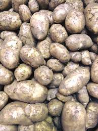 "Potato - Now In -   ""Cornish Earlies New""  500gm"
