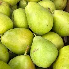 Pear - Comice x 3. New In, KENT grown.