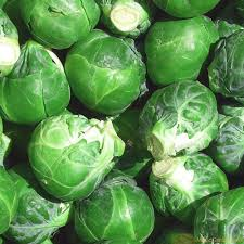 Sprouts - TITCHFIELD  x 500gm
