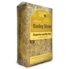 Pet, Barley Straw
