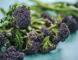 Purple Sprouting x 500g