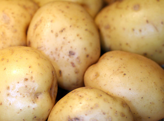 Potato Maris Piper – 25kg