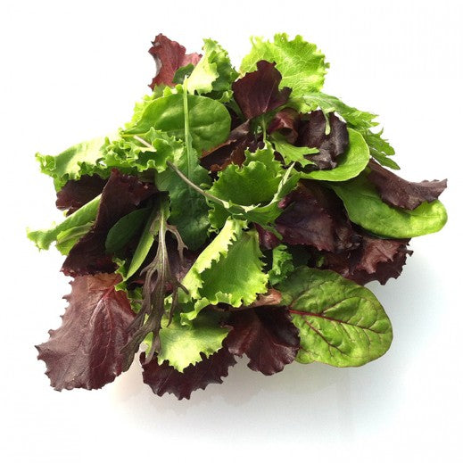 Mixed Baby Leaves - x 1 pkt