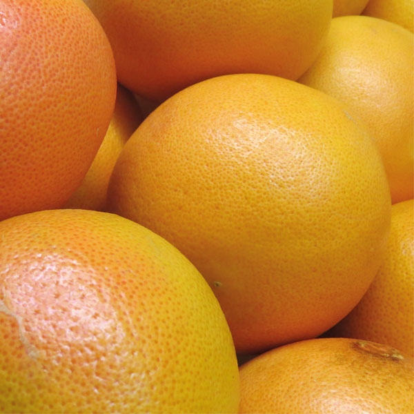 Oranges Small x4