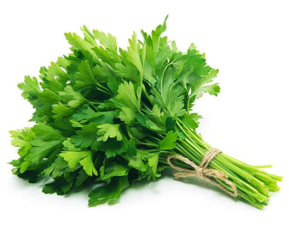 Parsley Curly – bunch