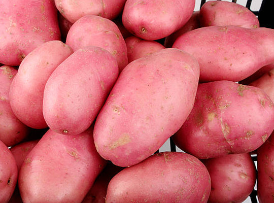 Potato – Washed Red – 25kg