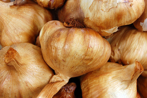 Garlic Smoked – bulb
