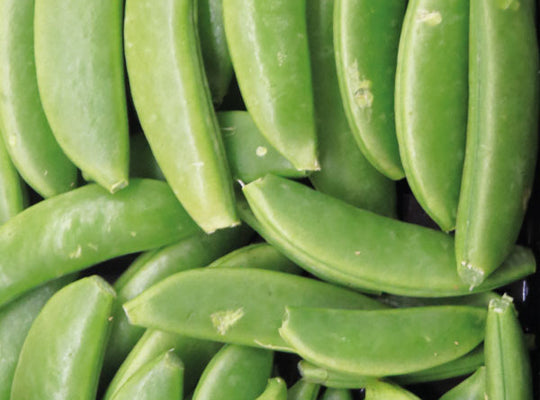 SugarSnap Pea - 150gm pkt