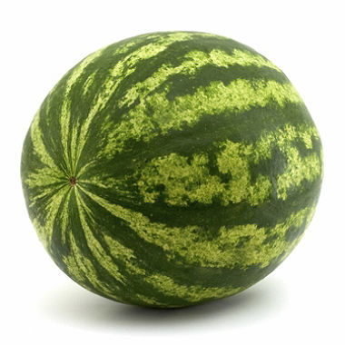 Watermelon - whole - LARGE