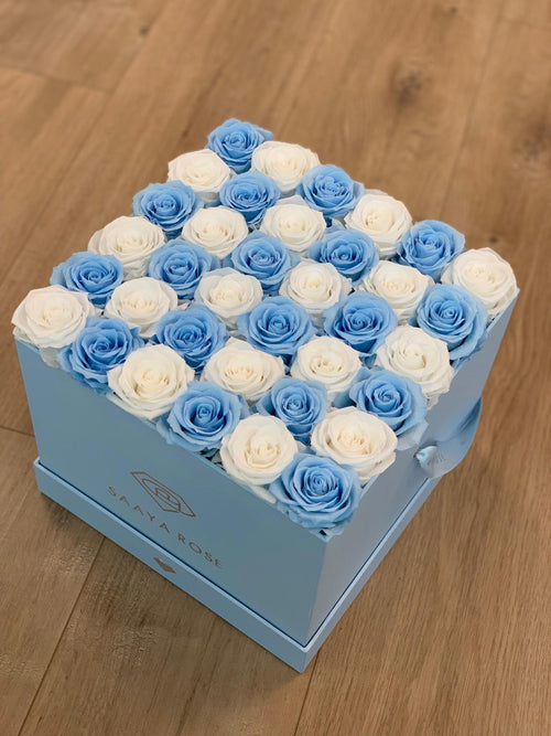 36 Checkered Sky Blue and White Roses (Blue Box)