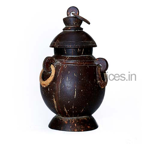 Coconut Shell Pot