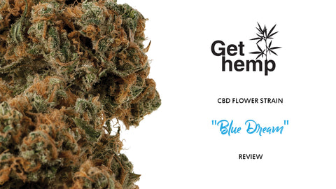 CBD flowers gethemp