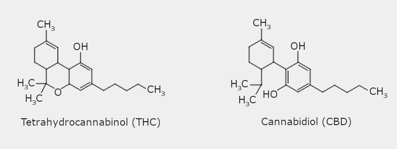 THC vs. CBD Chemical Structure