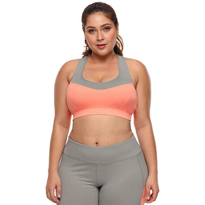 Large Big Plus Size Fitness Top Female Sport Brassiere Push Up Piping Trim Padded Women Running Yoga Workout Sports Bra 2018 - SuRegaloExpress