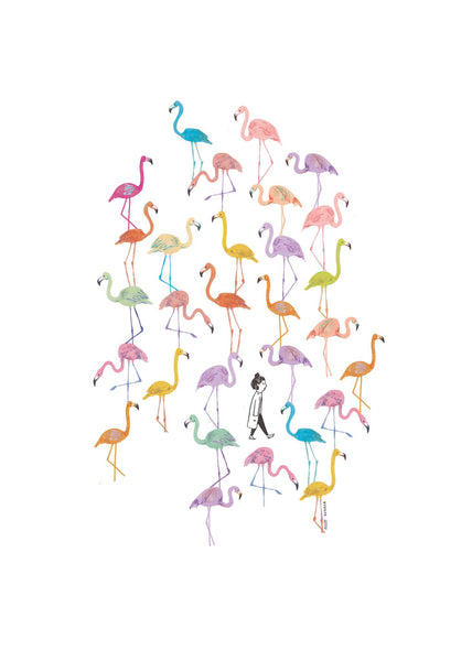 lost in flamingos