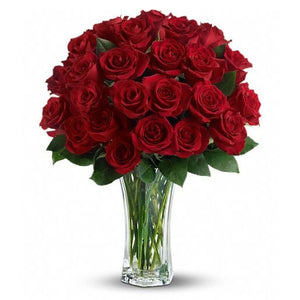 Love and Devotion : 2 Dozen Premium Red Roses : FREE Vase
