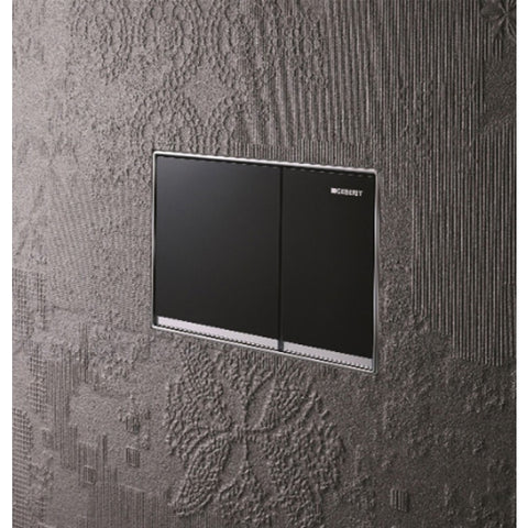 Geberit Omega60 Dual Flush Plate - Black Glass
